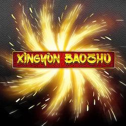 XINGYUN BAOZHU Logo
